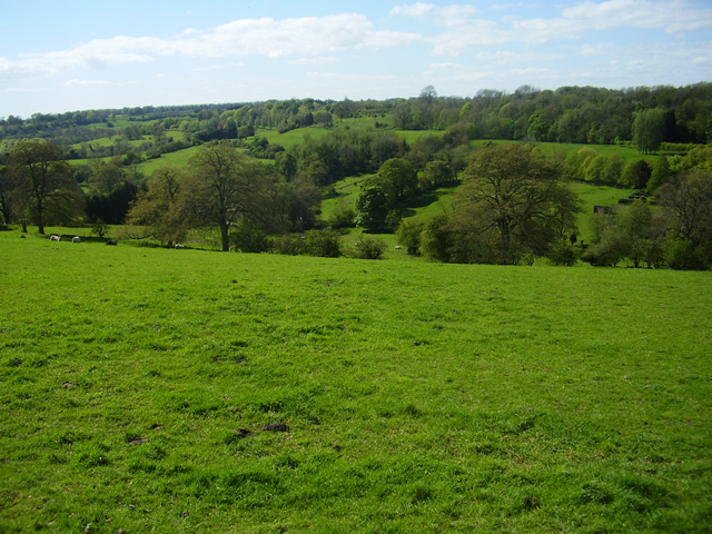 Toadsmoor Valley in the spring
